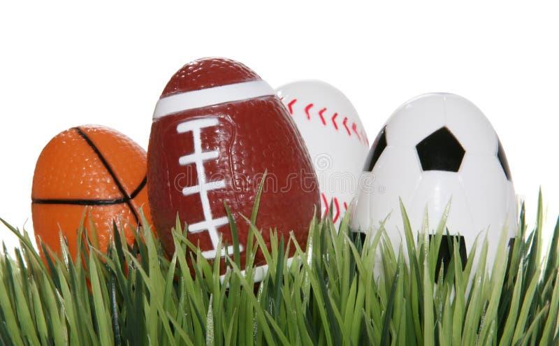 Esferas dos esportes na grama fotos de stock