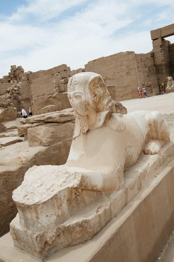 Esfinge del statueof de Egipto antiguo en templo del karnak de Luxor imágenes de archivo libres de regalías
