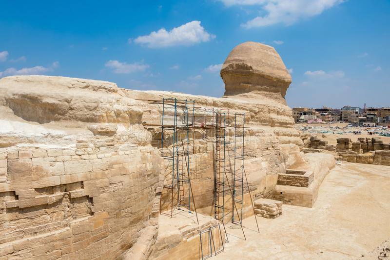 Esfinge egipcia famosa en Giza del lado trasero foto de archivo