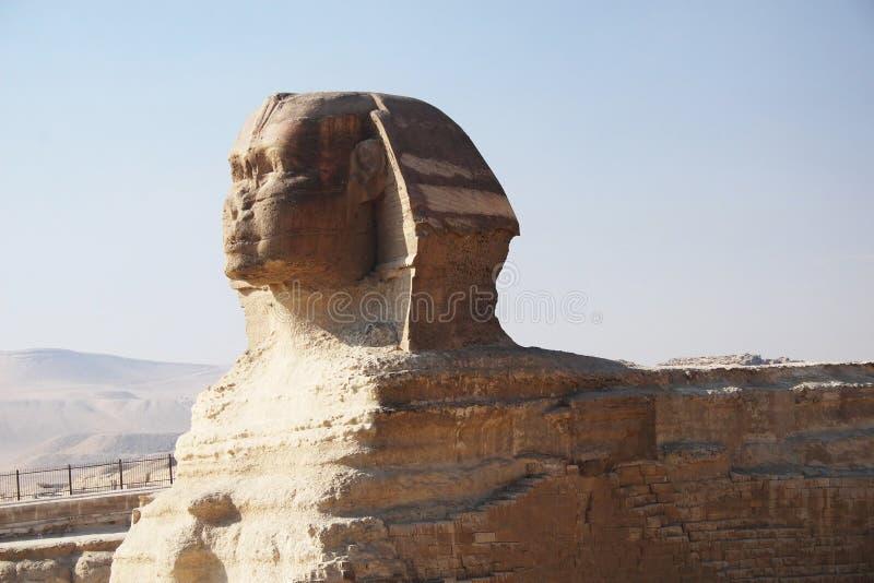 Esfinge, El Cairo foto de archivo