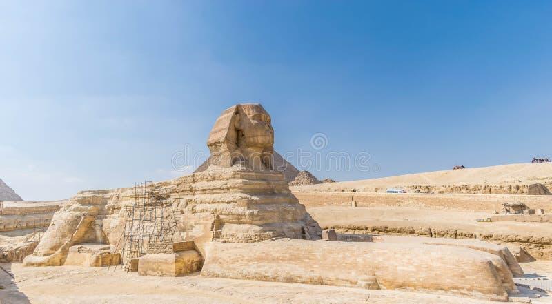 A esfinge em Sahara Desert foto de stock royalty free
