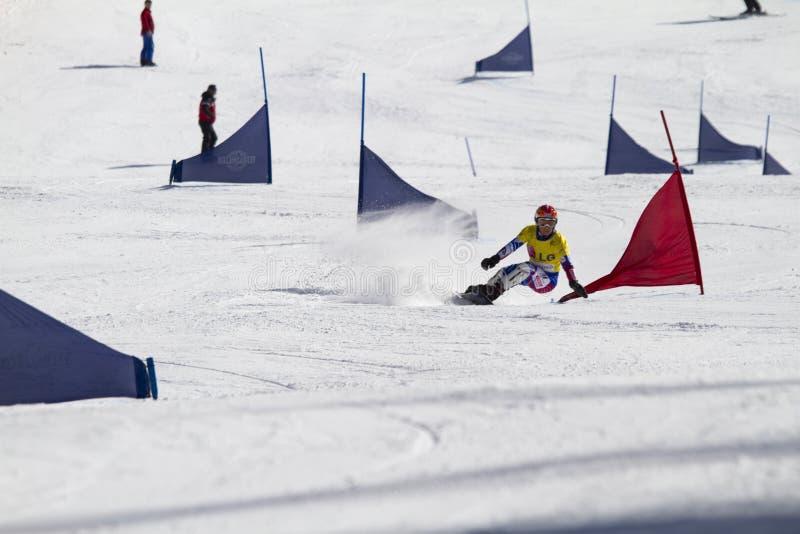 Eslalom gigante paralelo del Snowboard fotos de archivo libres de regalías