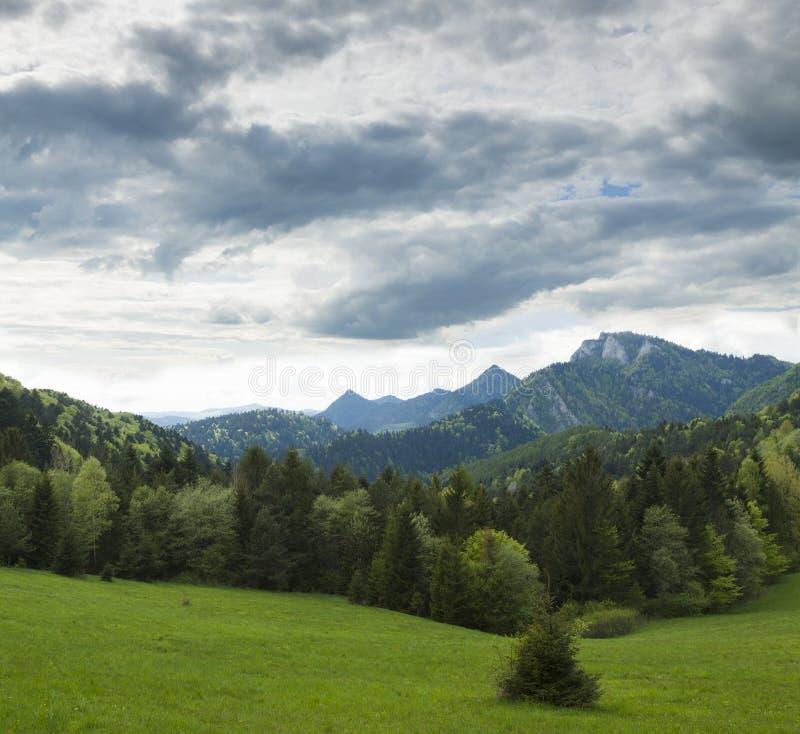 Eslovaquia, Polonia, cordillera de Pieniny con el pico de Trzy Korony foto de archivo libre de regalías
