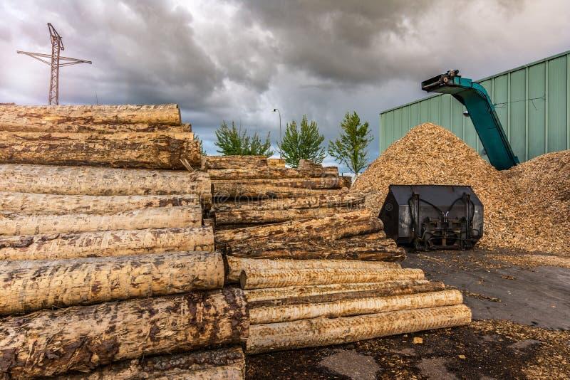 Esmagar a máquina da madeira e dos logs ao desperdício de processo e transforma em pelotas fotografia de stock royalty free