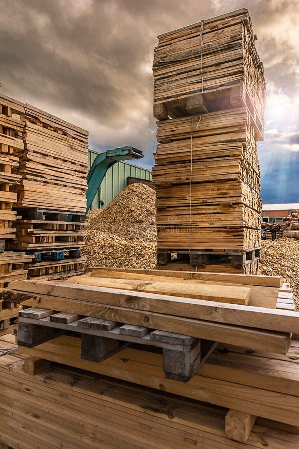 Esmagar a máquina da madeira e dos logs ao desperdício de processo e transforma em pelotas imagem de stock royalty free