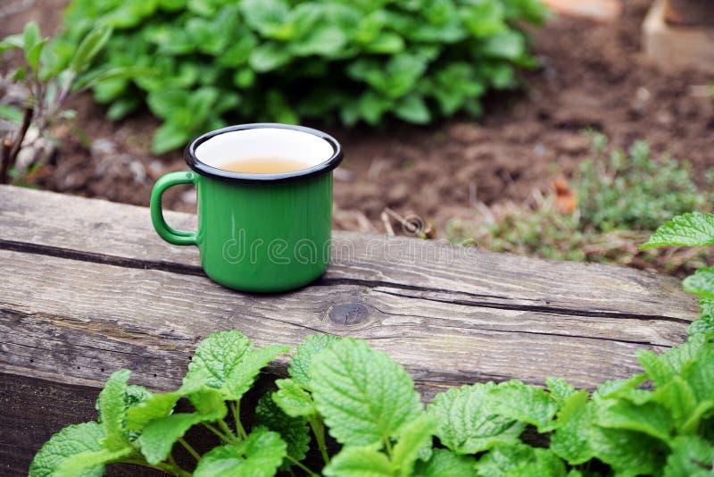 Esmalte la taza de infusión de hierbas foto de archivo libre de regalías