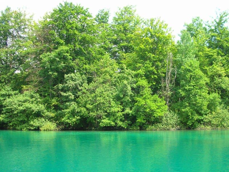 Esmerald lake. Esmerald water on Plitvice lakes, Croatia royalty free stock photos