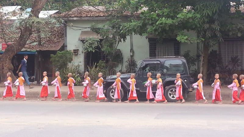Esmola pequena da caminhada das freiras na manhã na estrada, alinhada em Yangon Myanmar imagens de stock royalty free