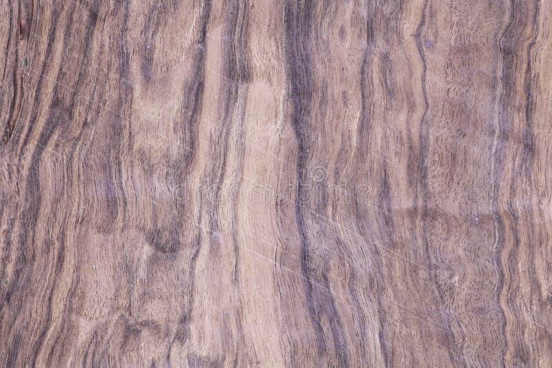 Esotico di legno, scrittorio dell'albero dell'impiallacciatura fotografie stock libere da diritti