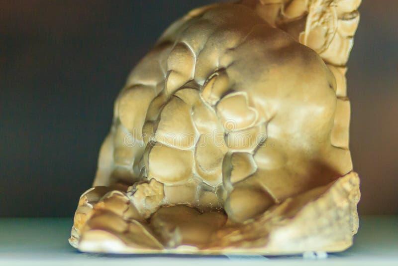 Espécime botryoidal da rocha do hábito de Smithsonite da mineração e do quarr imagem de stock
