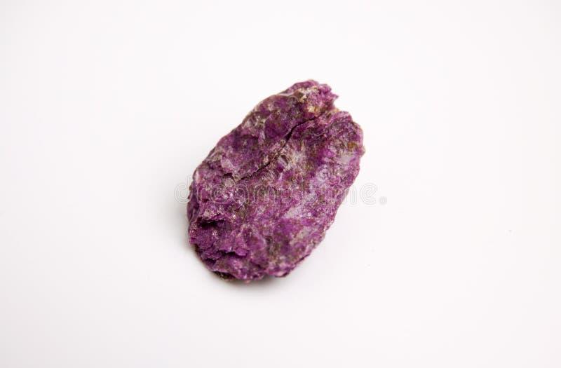 Espécime de Violet Seraphinite de Sibéria oriental em Rússia na casca de árvore fibrosa na floresta fotografia de stock royalty free