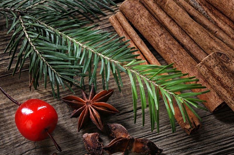 Espírito do Natal? com Santa e Noel fotos de stock royalty free
