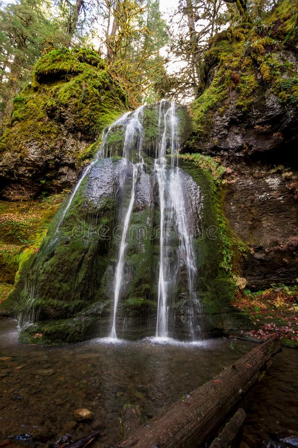 Espíritu cae bosque nacional Umpqua en Oregón imagen de archivo libre de regalías