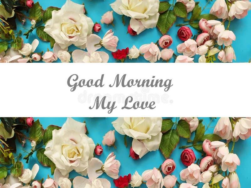 Espaço branco da cópia de Valentine Day For Women Pink do aniversário floral bonito do casamento do cartão de cumprimentos do fun imagem de stock