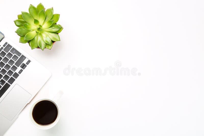 Espaço de trabalho conceptual ou conceito do negócio Laptop com planta em um potenciômetro e em uma xícara de café no fundo branc imagens de stock
