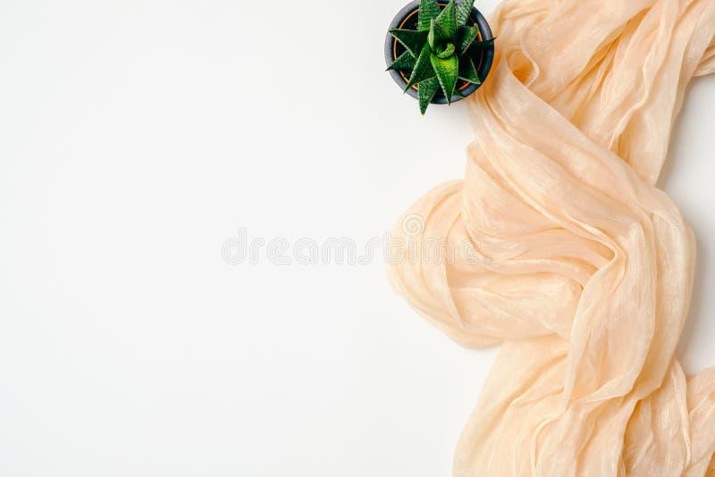 Espaço de trabalho fêmea com lenço cor-de-rosa e a planta suculento no fundo branco Mesa de escrit?rio domicili?rio lisa da confi foto de stock