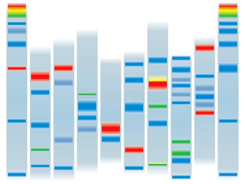Espaço livre do ADN ilustração royalty free