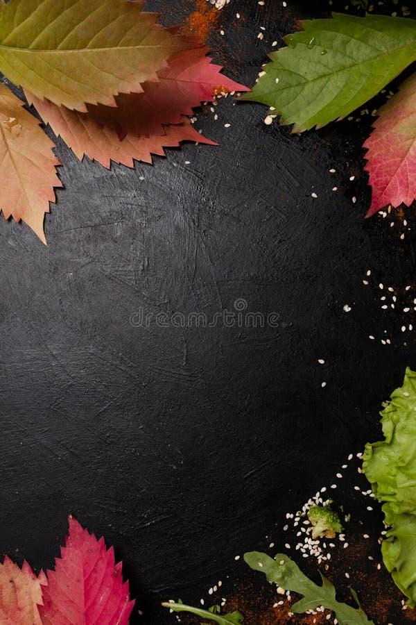 Espaço outonal do negativo das sementes das ervas das folhas imagem de stock