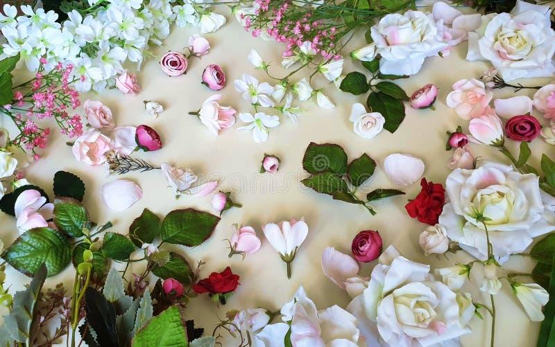 Espa?o branco da c?pia de Valentine Day For Women Pink do anivers?rio floral bonito do casamento do cart?o de cumprimentos do fun imagens de stock
