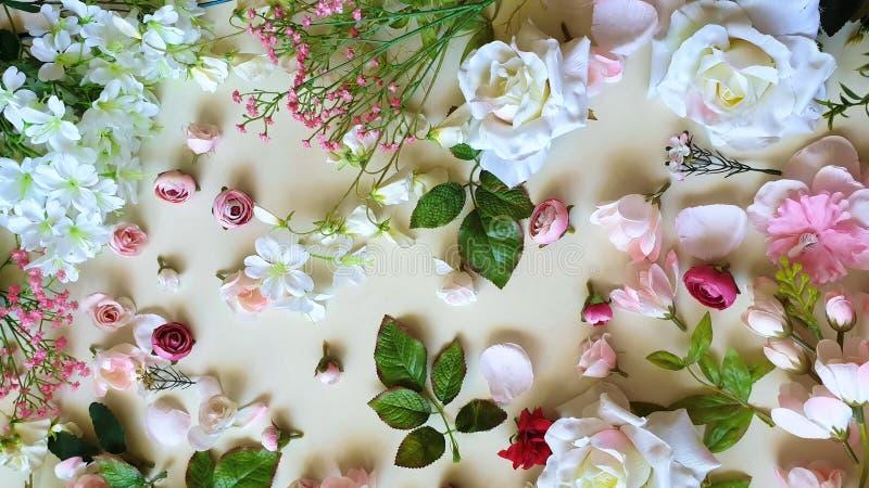 Espa?o branco da c?pia de Valentine Day For Women Pink do anivers?rio floral bonito do casamento do cart?o de cumprimentos do fun foto de stock royalty free