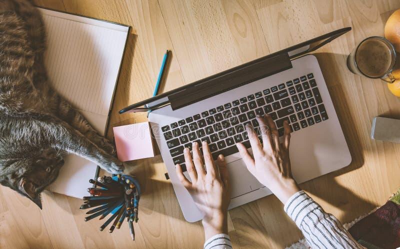 Espace de travail créatif : fille travaillant à l'assisté par ordinateur à côté de elle photo stock
