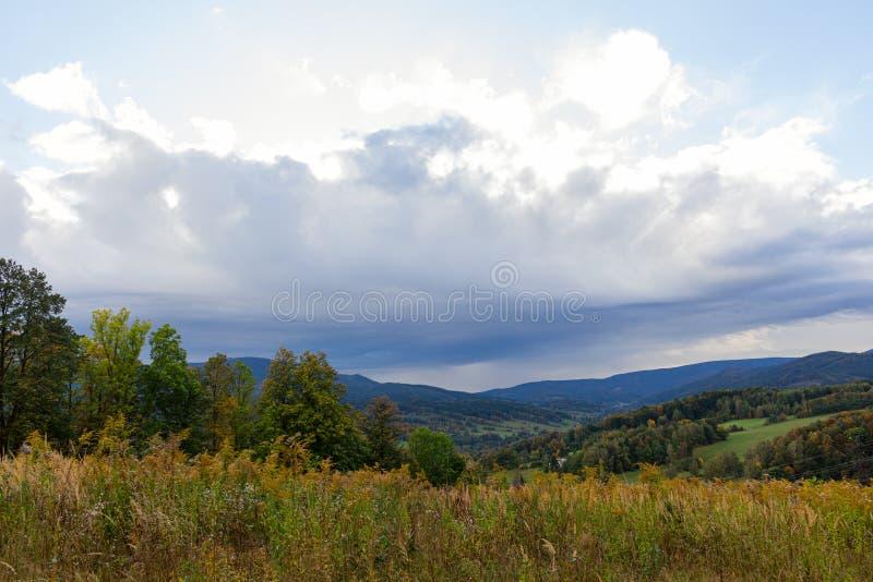 Espacio copiado de flor de hierba con cielo azul y nube blanca, fondo de montaña. Profundidad del campo baja. Ambiente de la natu fotografía de archivo