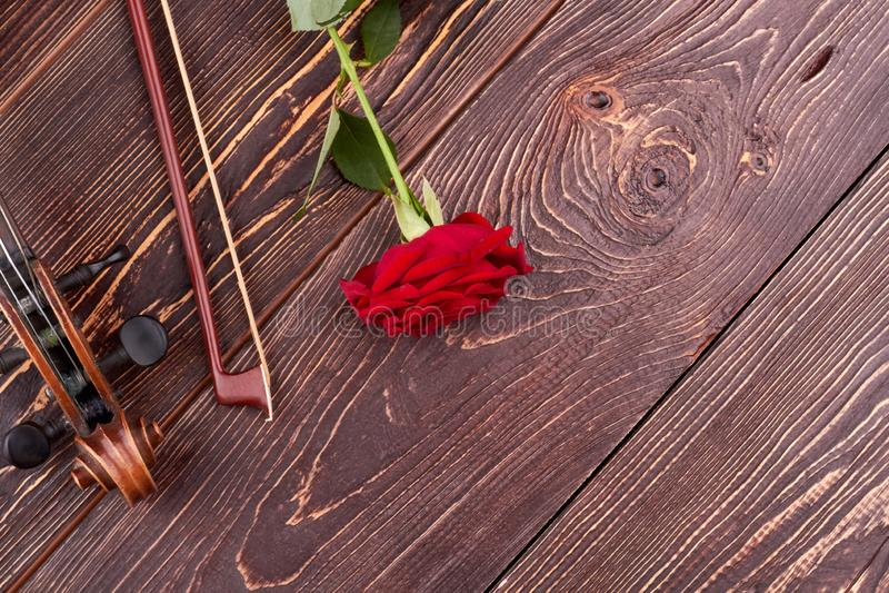 Espacio del violín, del arco, color de rosa y de la copia imágenes de archivo libres de regalías