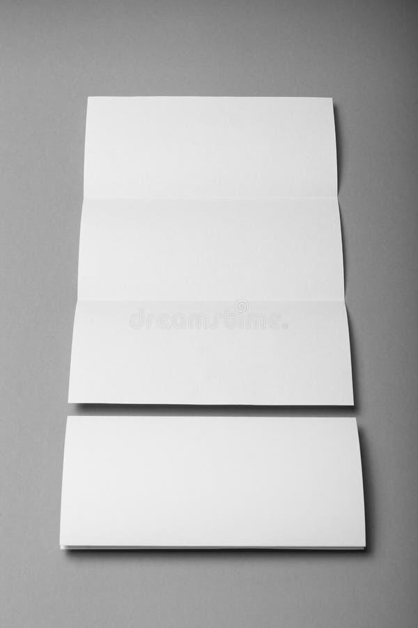 Espacio en blanco blanco triple del papel del folleto, aviador del DL, diseño del folleto imágenes de archivo libres de regalías