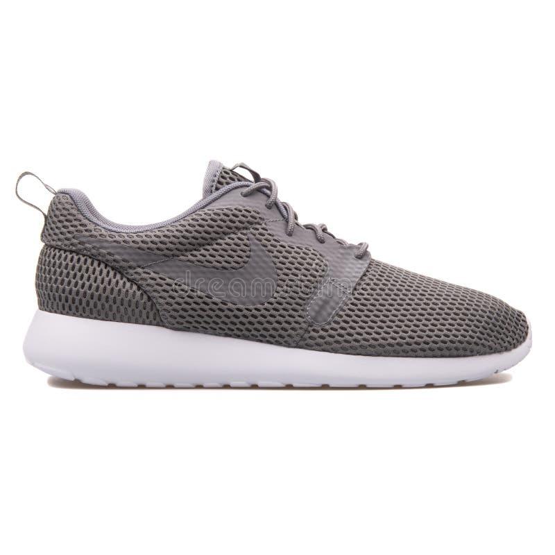 Espadrille grise de BR de Nike Roshe One Hyper photographie stock