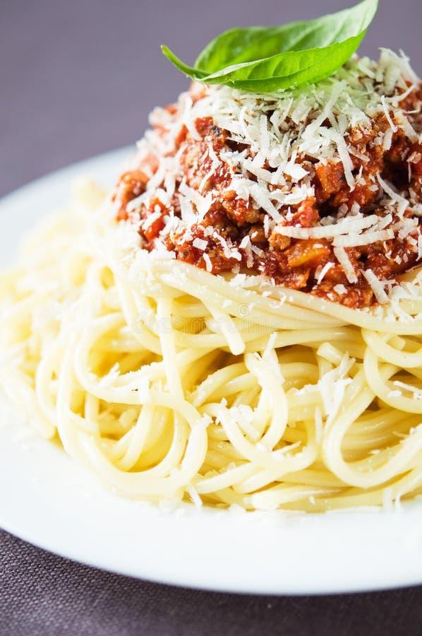 Espaguetis boloñés con parmesano imagen de archivo libre de regalías