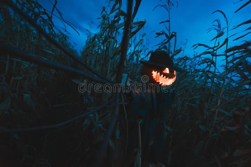Espantalho assustador da abóbora em um chapéu fotos de stock