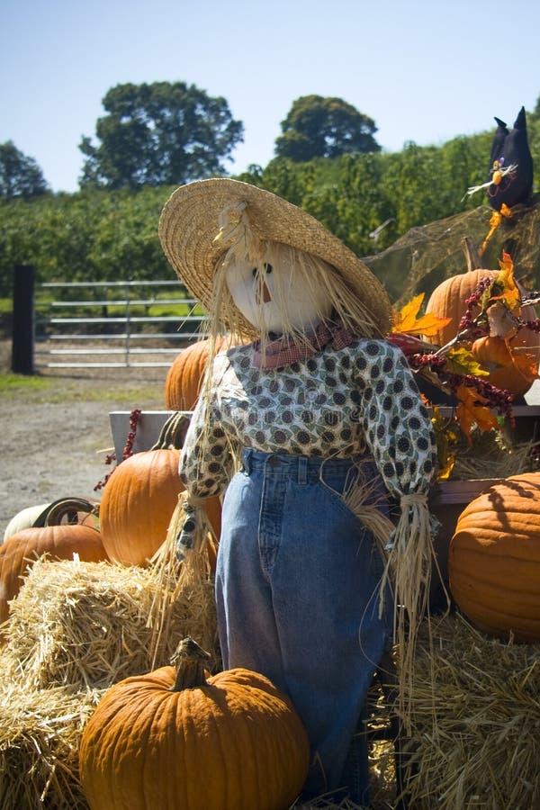 Espantalho de Halloween imagem de stock