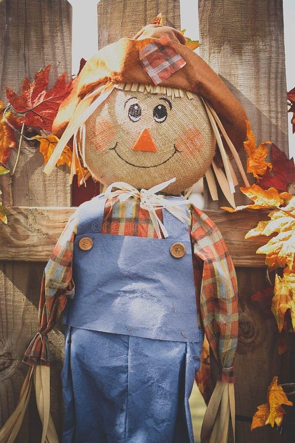 Espantalho de sorriso em um dia do outono imagens de stock