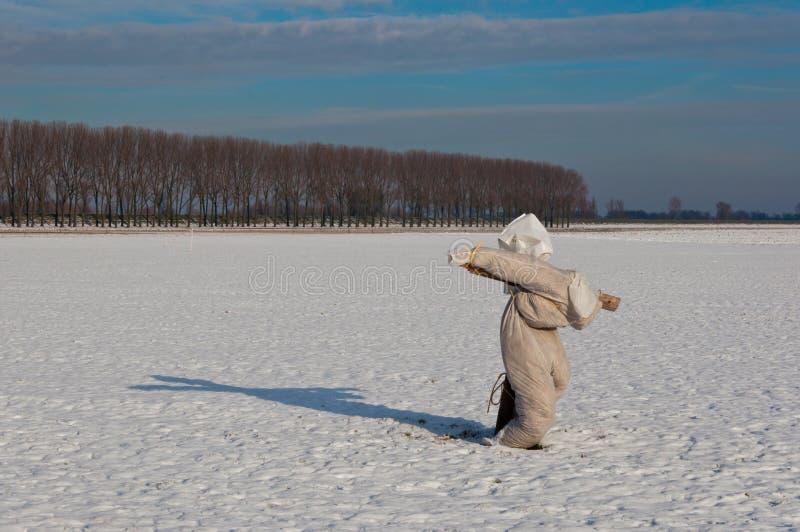 Espantalho em um campo nevado fotografia de stock