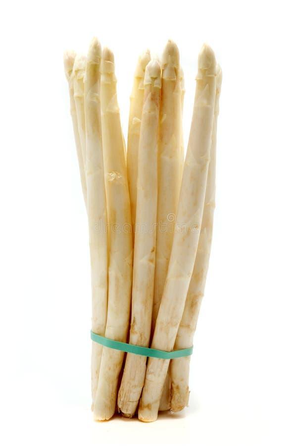 Espargos brancos fotografia de stock