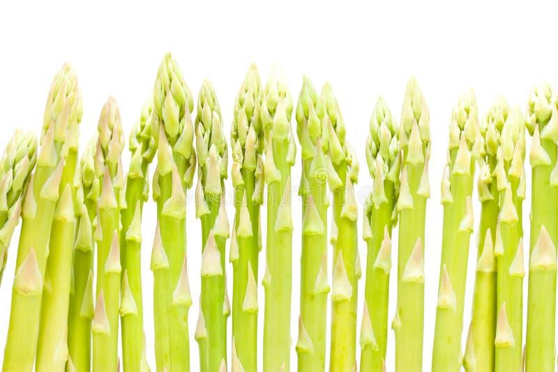 Espargos verdes frescos fotografia de stock royalty free