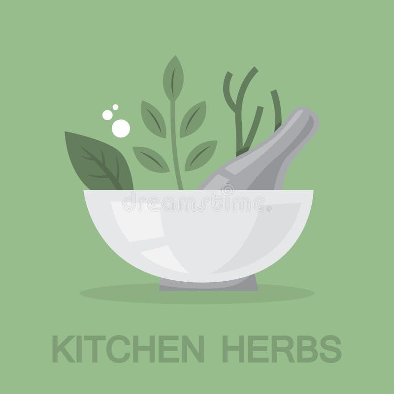 Especia e hierbas para cocinar la colección deliciosa de la comida libre illustration