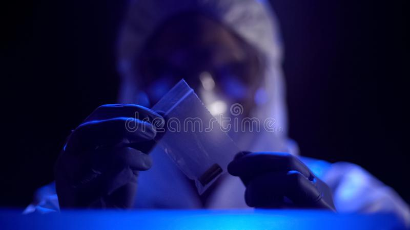 Especialista criminal que examina la escena del crimen, pruebas de examen de la bala en paquete imágenes de archivo libres de regalías