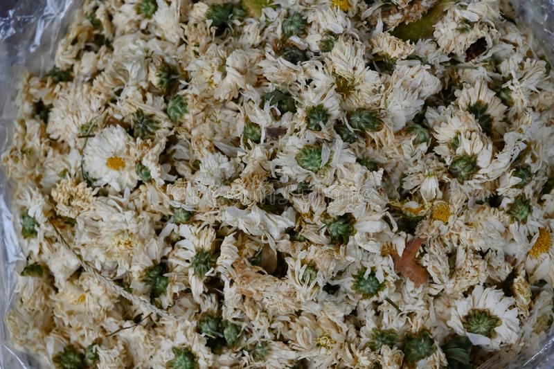 Chrysanthemum  dried flowers for tea,  - asian medicine and healthcare stock photos