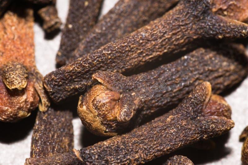 Especiaria do cravo-da-índia imagens de stock