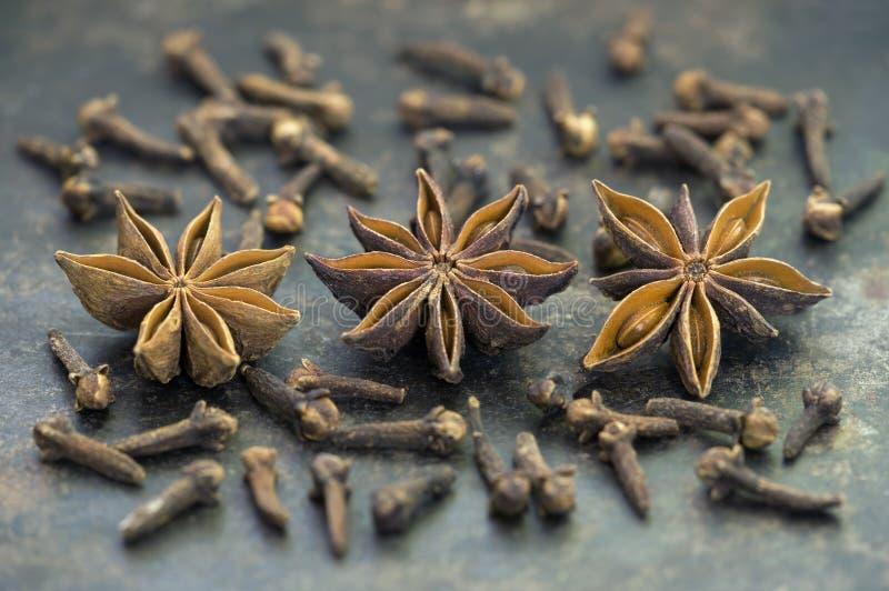 Especiarias asiáticas do alimento biológico, anises secos da estrela com cravos-da-índia imagem de stock royalty free