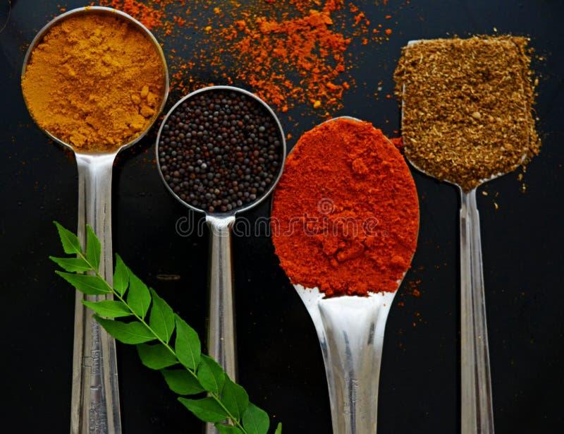 Especiarias aterradas indiano imagem de stock
