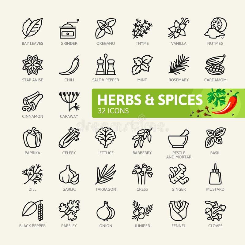 Especiarias, condimentos e ervas - linha fina mínima grupo do ícone da Web Coleção dos ícones do esboço ilustração royalty free