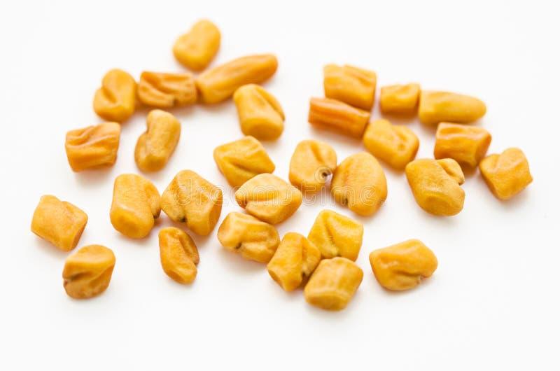 Especiarias das sementes de feno-grego fotografia de stock royalty free