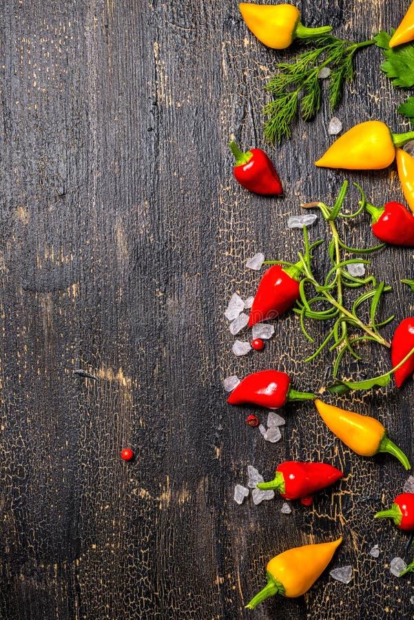 Especiarias decorativas, pimentas secas, sal do mar, hortaliças diferentes sobre fotografia de stock