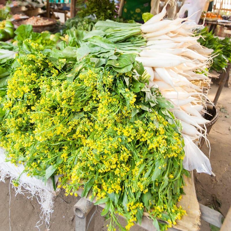 Especiarias e rabanete locais Bagan do daikon, Myanmar fotografia de stock royalty free