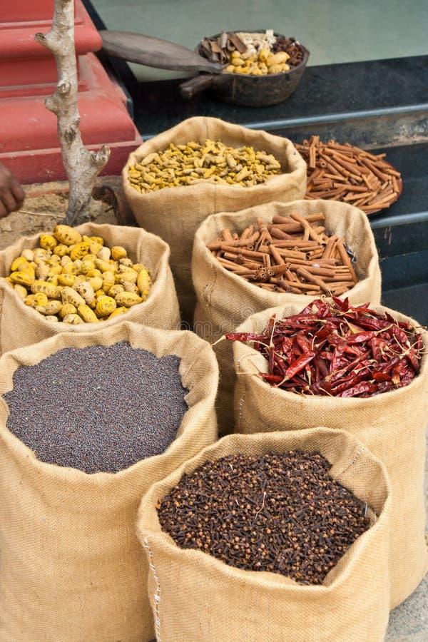 Especiarias em Kerala, India fotos de stock