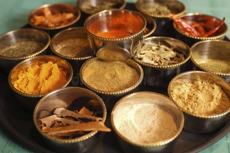 Especiarias indianas foto de stock royalty free