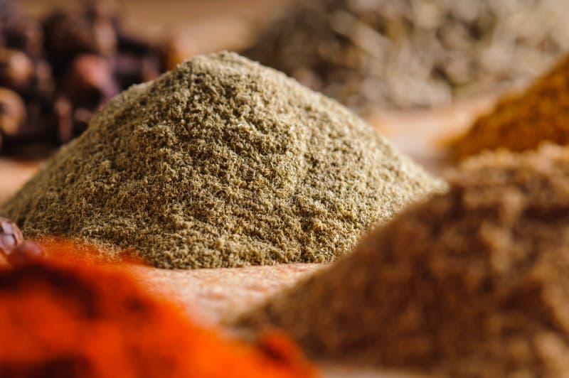 Especiarias indianas imagem de stock