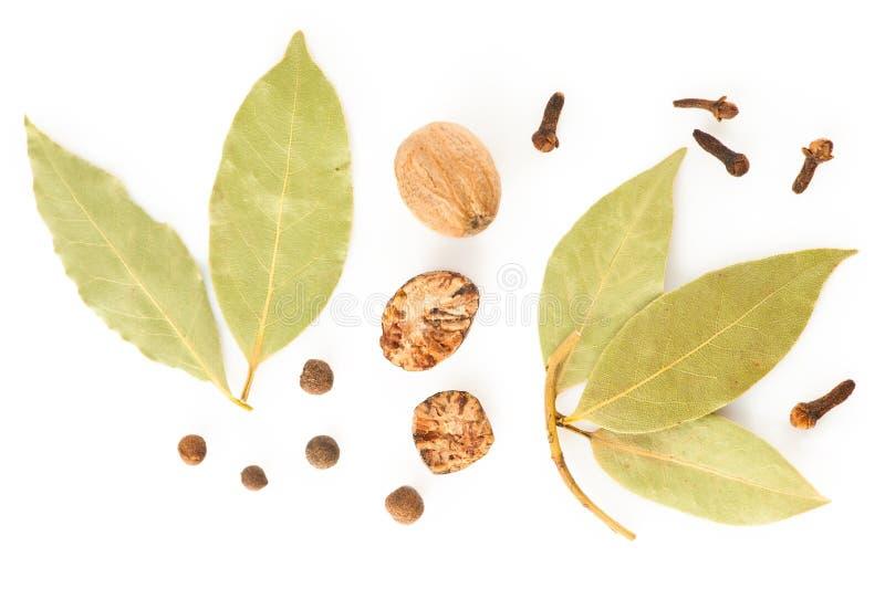 Especiarias. Mistura de ervas secas diferentes foto de stock royalty free